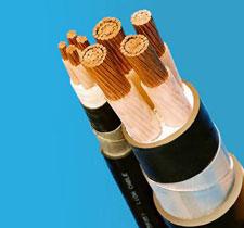 Cáp ngầm XLPE/PVC/DSTA/PVC